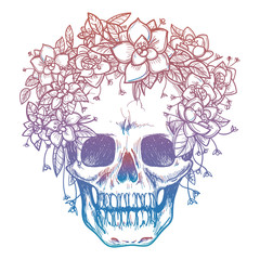 Colorfull skull and flower headdress isolated on white background. Vector illustration