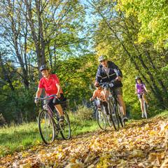 gutgelaunte Seniorengruppe macht eine Radtour im Herbst