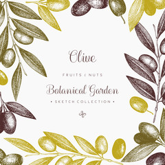 Olive branch wreath. Vintage card design with hand drawn olive tree sketch. Vector template. Botanical illustration