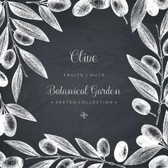 Olive branch wreath. Vintage card design with hand drawn olive tree sketch. Vector template. Botanical illustration on chalkboard