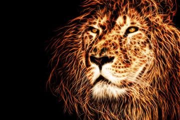 lion head illustration background