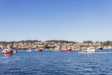 Fishing boats in Arousa Island