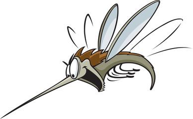 Mosquito A cartoon Mosquito