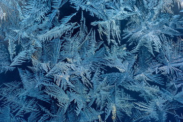 Hoarfrost in winter