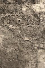 old ruins wall