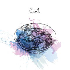 Canh watercolor effect illustration.