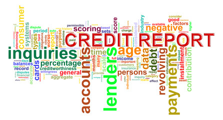 Credit report word tags