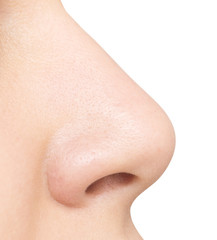 nose isolated on white