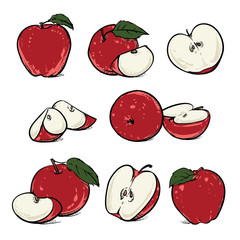Red apple with leaf and slice on a white background, Vector clip art