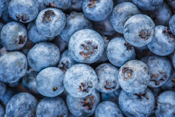 blue background of ripe blueberries, bilberries