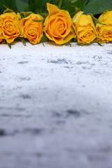Róże dla romatyczności