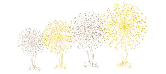 feu d'artifice célébration