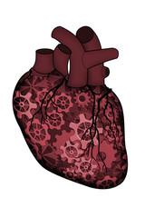 heart as a machine