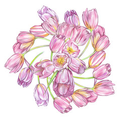 Illustrations of Tulips flowers. Perfect for greeting card or invitation. Background in watercolor style 8 March holiday.