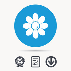 Flower icon. Florist plant with petals symbol. Achievement check, download and report file signs. Circle button with web icon. Vector