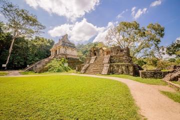 Fototapeta Piramidy w Palenque w Meksyku widok bez ludzi szeroki kąt w słońcu z trawą dzrewa obraz