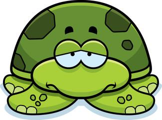 Sad Little Sea Turtle