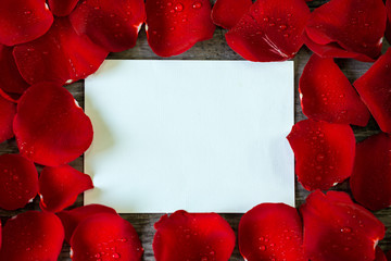 red rose petals frame over empty card.