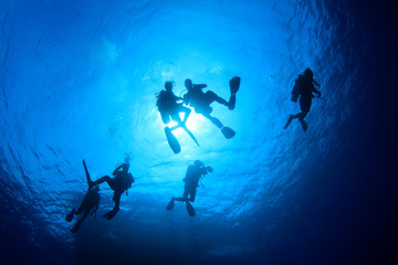 Scuba diving. Underwater divers silhouette against sun