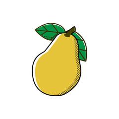 Pear.  Vector illustration