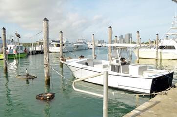 Basic nor frills sport rising boat moored at Haulover Marina in southeast florida