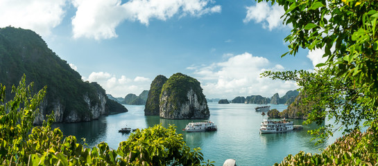 View over Ha Long Bay. View over Ba Tu Long Bays iconic limestone mountains, with cruise ships. Taken near Ha Long, Vietnam. Wall mural