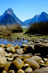 Green Mossy Stones at Milford Sound, New Zealand, with Mitre Peak in a background