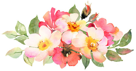 Roses bouquet composition. Watercolor illustration