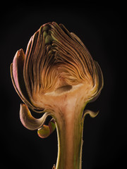 Half of an artichoke
