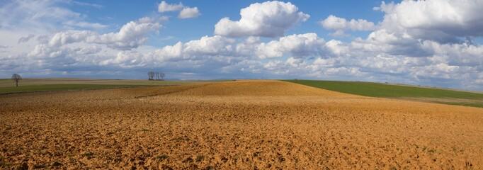 Paisaje Panoramico de Campos con Barbechos y Cultivos y Cielo con Nubes Algodonosas Wall mural