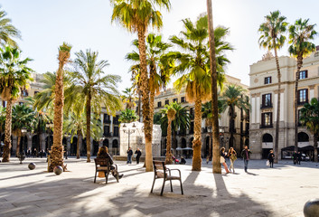 Foto op Canvas Barcelona Park mit Palmen in Barcelona, Spanien