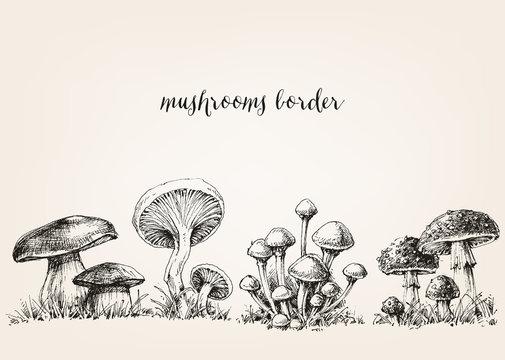 Cute mushrooms border, hand drawn collection