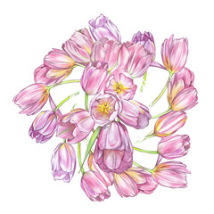 Tulips background in watercolor style, greeting card for 8 March holiday.