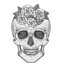 Human skull tribal style.Tattoo blackwork. Vector hand drawn illustration. Boho
