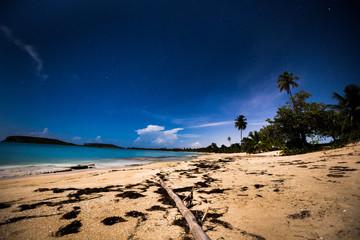 Midnight Bamboo, Sun Bay, Vieques, Puerto Rico