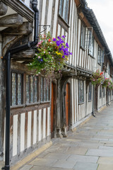 Old windows and flowers with historic building. Several pots wit