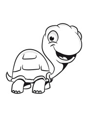 Turtle cute kids funny