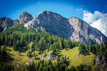 Wall Mural - Summer in Dolomites Scenery