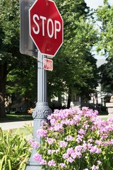 Flowers by Stop Sign