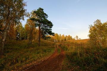 Autumn landscape at sunset