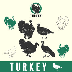 TURKEYS, silhouette image