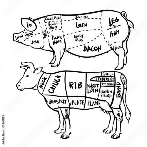 u0026quot pork and beef cuts diagram and butchery set  vector clip