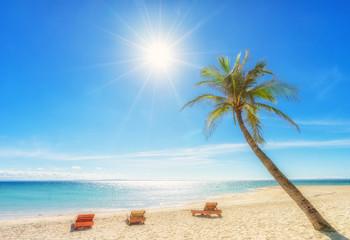 Tropical vacation. Beautiful sea, 3 deckchairs, sand, palm and sun - very beautiful beach.
