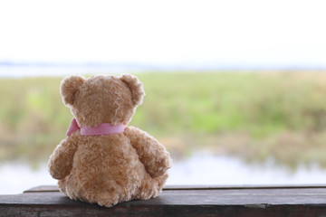 Stock Photo:.Alone teddy bear sit back on wooden table with mars