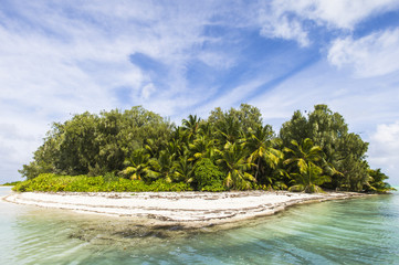 A small palm covered island in the St Joseph Atoll