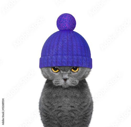 You searched for: cat in woolly hat! Etsy is the home to thousands of handmade, vintage, and one-of-a-kind products and gifts related to your search. No matter what you're looking for or where you are in the world, our global marketplace of sellers can help you find unique and affordable options. Let's get started!