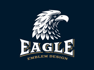 Eagle head logo - vector illustration on dark background