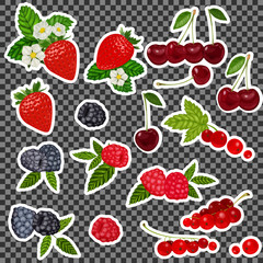 Strawberry, Blueberry, Cherry, Raspberry, Red currant. Stickers, patch set collection. Vector artwork. Fashion badges. Wallpaper. Vintage concept