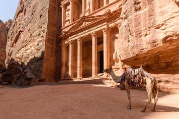The famous Tresury in Petra