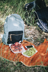 Nice picnic outdoors on an orange saddlecloth. Backpack, grapes and donut peaches with a forest as a background